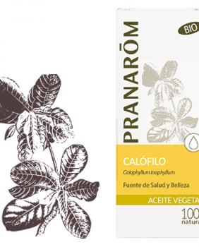 ACEITE VEGETAL CALOFILO - Pranarom